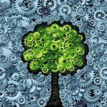 Les innovations portent toujours plus sur l'optimisation des ressources en économie de rareté...