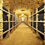 Faire fructifier son vin, c'est le garder sur le long terme dans des conditions optimales.